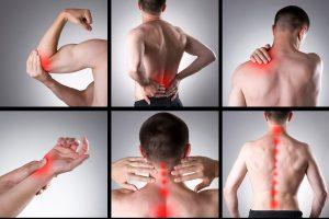 dolore muscolo scheletrico e 5 leggi biologiche
